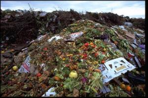 foodwastage_in_US