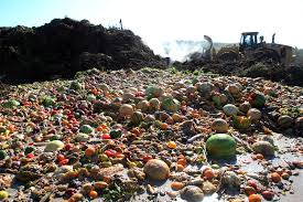 food waste in compost